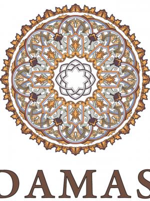 Damas Clinic – клиника пластической хирургии